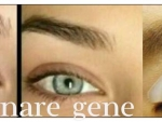 laminare-gene